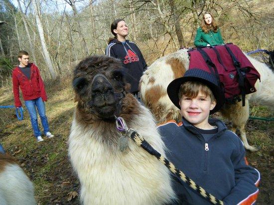 Smoky Mountain Llama Treks - Day Tours: Peanut and Ethan