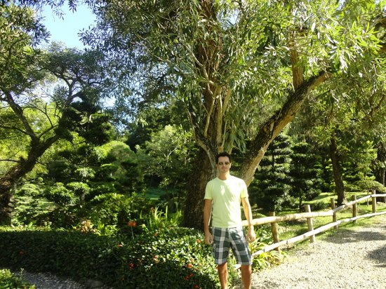 National Botanical Garden: Garden