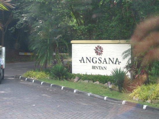 Angsana Bintan: Angsana