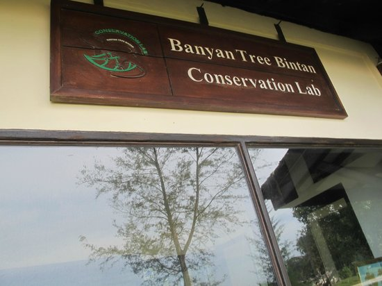 Angsana Bintan: Conservatrion Lab