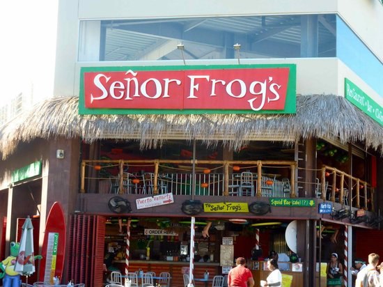 The Frog Restaurant Review