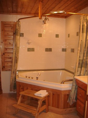 Northern Lights Bed and Breakfast : Cherry Room Bath