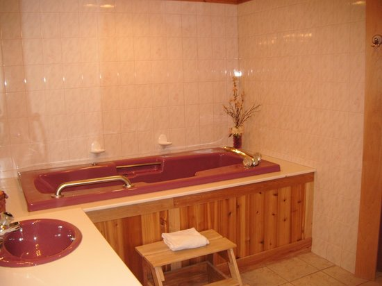 Northern Lights Bed and Breakfast : Elm Room Bath