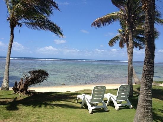 Bedarra Beach Inn: Beach bei Ebbe