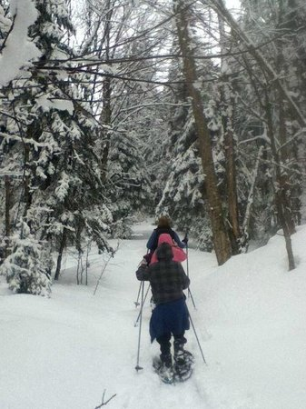 Northern Lights Bed and Breakfast: Snowshoe
