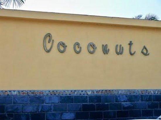 Coconuts Foto