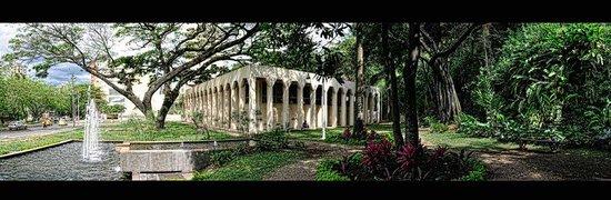 Museo La Tertulia: Un jardín de tranquilidad en medio de una fuente y un samán, además de la brisa caleña.
