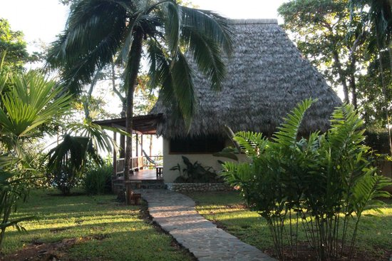 Bosque del Cabo Rainforest Lodge : View of our cabin overlooking the ocean