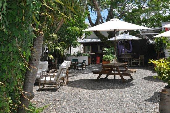 Hone's Garden: relaxed beer garden