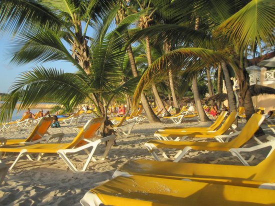 Coco Reef Tobago: Private beach