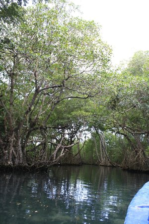 Explora Ecotour: Natural Beauty