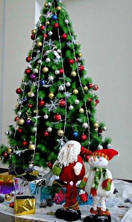 Mingachevir, อาเซอร์ไบจาน: Our beautiful New Year decorations.