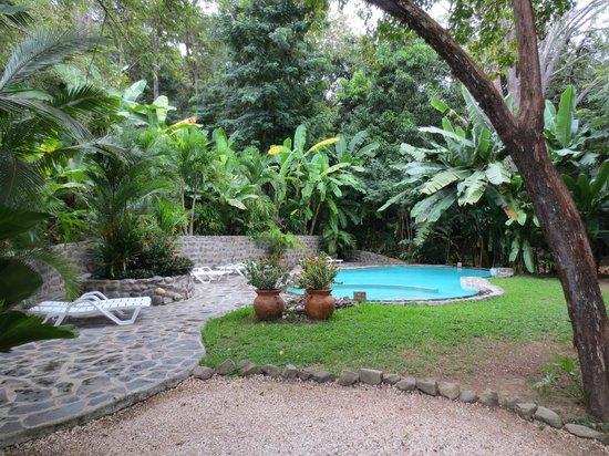 Manala Hotel: Pool