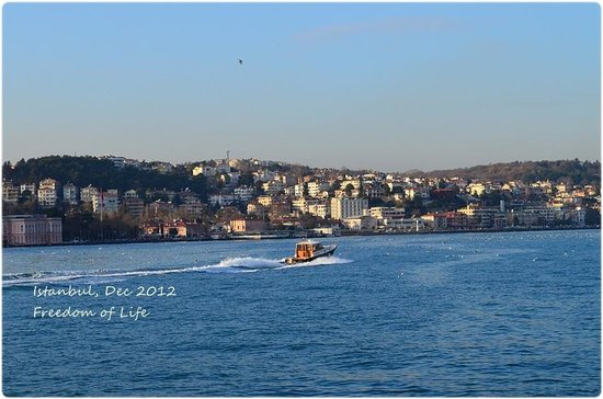 Bosphorus Cruise Day Trips: View from the boat