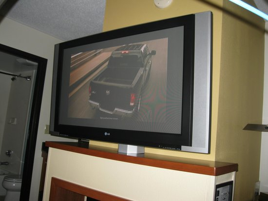Hyatt Place Oklahoma City Airport: flat screen tv