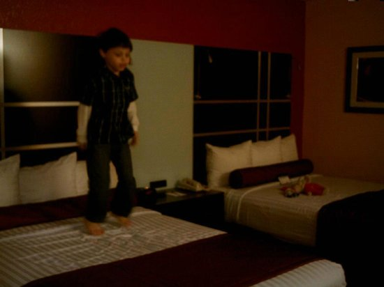 Best Western Plus Carlton Suites: My grandson checking out the beds!