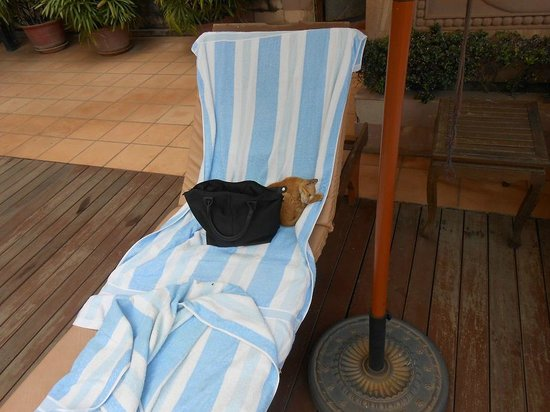 Steung Siemreap Thmey Hotel: Relaxing by the pool
