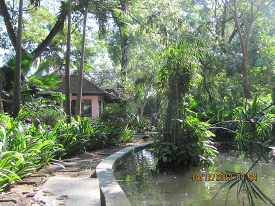 The River Garden Siem Reap: Serene gardens to relax