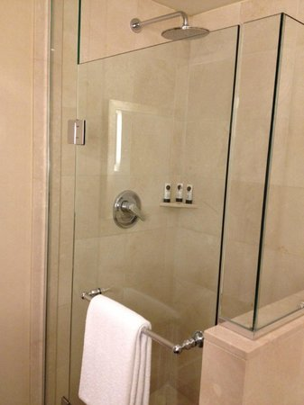 Sofitel Washington DC: large rain shower