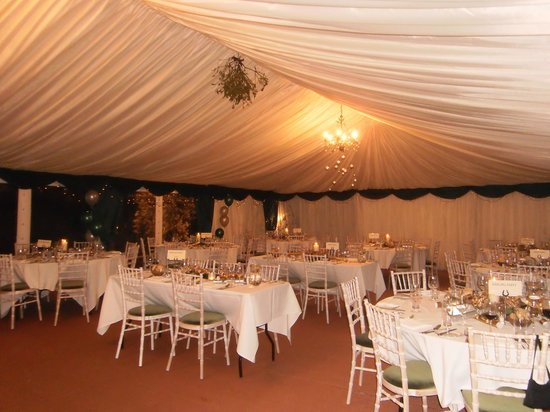 The Lion: What a beautuful marquee.. it did you proud.
