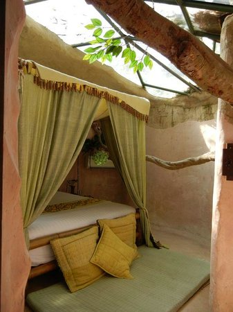 "Huarn Jana Boutique Resort: The ""Princess Room"" with life tree and glass roof"