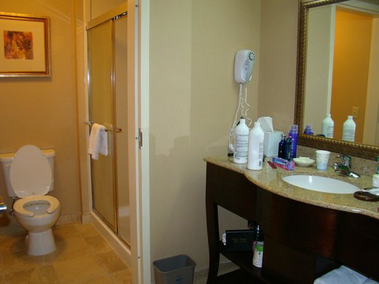 Hampton Inn Americus: You only got a shower with the room with one queen bed