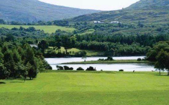 Arthur's Lodge Wood: Golf course