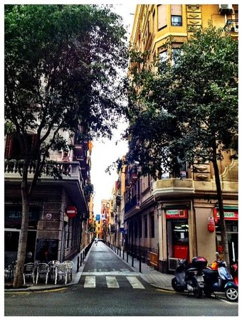 De Lis Guesthouse : Street of the hostel