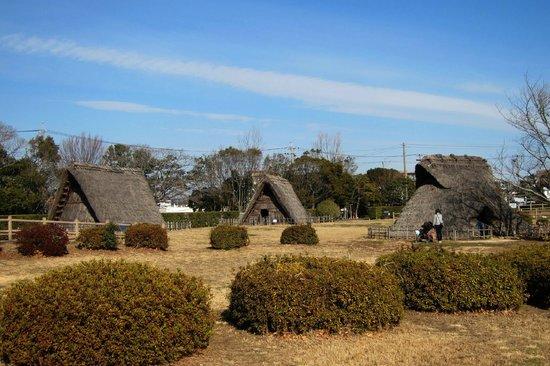 Hamamatsu City Shijimizuka Park
