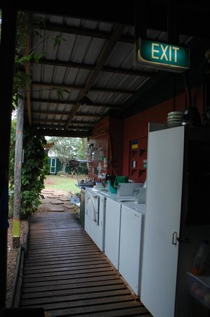 On The Wallaby Backpackers Lodge: Laundry and backyard