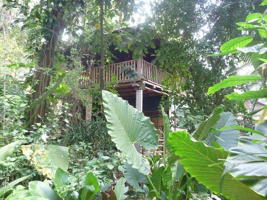 Bhakti Kutir: our two floor hut
