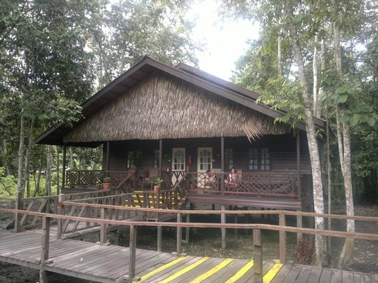 Bilit Rainforest Lodge : unità abitativa tipo (2 camere)