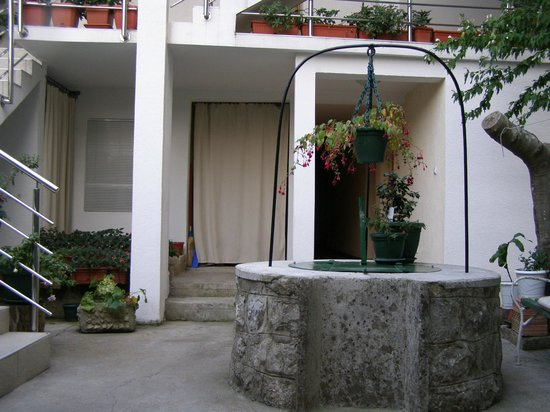 Apartments Djurovic: Courtyard