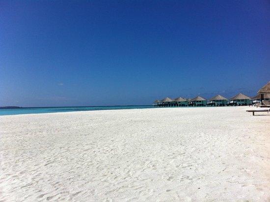 Kihaa Maldives: Spiaggia