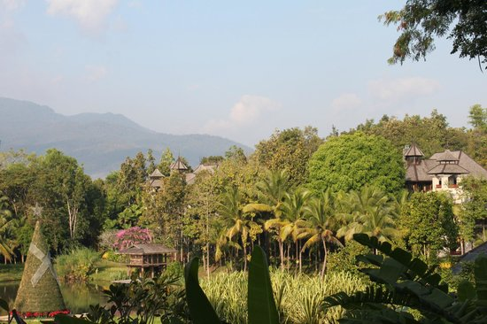 Four Seasons Resort Chiang Mai: View from breakfast