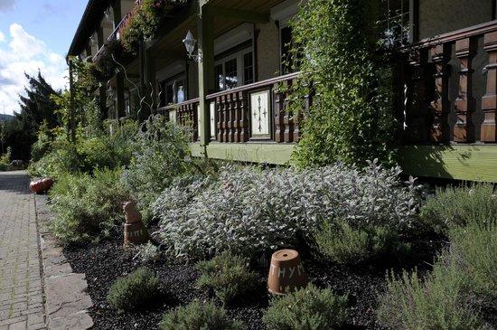 Hostellerie La Cheneaudiere - Relais & Chateaux: Jardin aromatique du chef de cuisine
