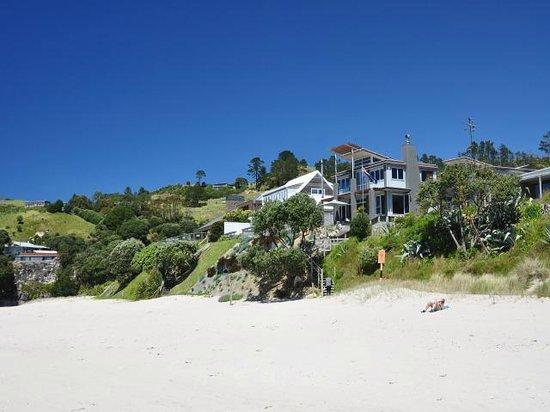 Hahei Oceanfront: Ansicht des Hauses Oceanfront