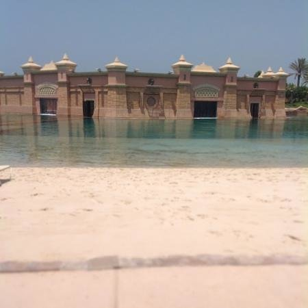 Atlantis, The Palm: dolphin bay;)