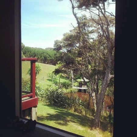 Kowhai Close: The view from the guesthouse master bedroom.