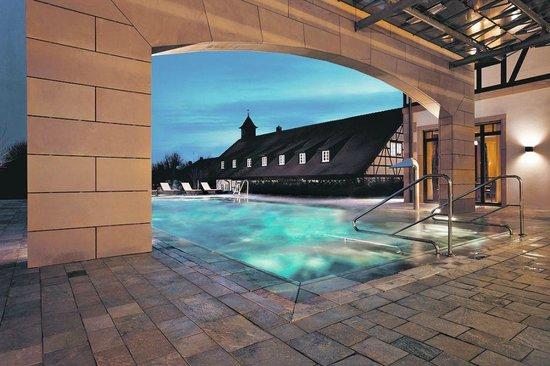 Wald & Schlosshotel Friedrichsruhe Day Spa : Außenpool