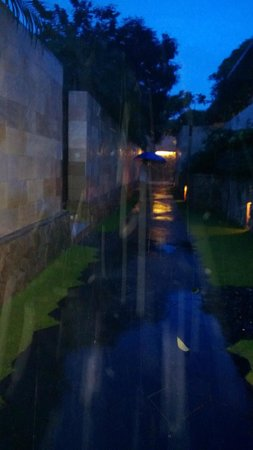 The Bale: Puddles in the rain