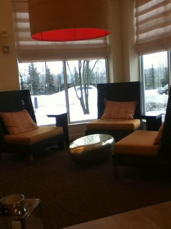 Hilton Garden Inn Cleveland/Twinsburg: A cozy area in the lobby