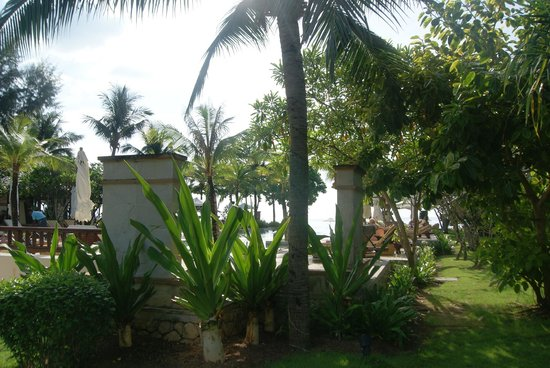 Layana Resort and Spa: grounds