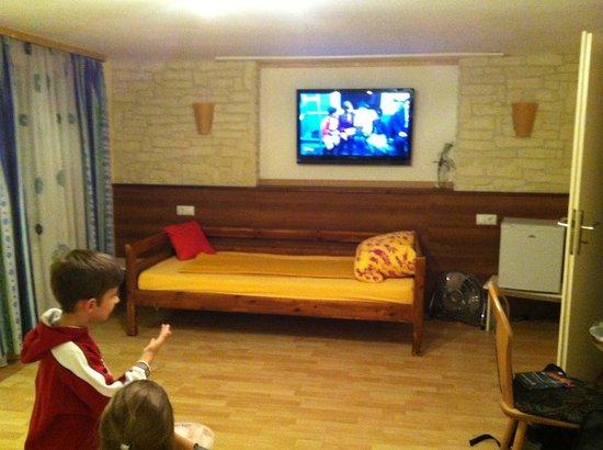 Gaestehaus Parkblick : zimmer mit tv