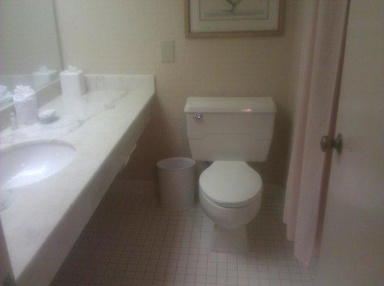 ลองฟองท์ พลาซ่า โฮเต็ล: Bathroom