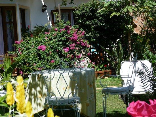 La Residence Camelia: le jardin est très agréable.