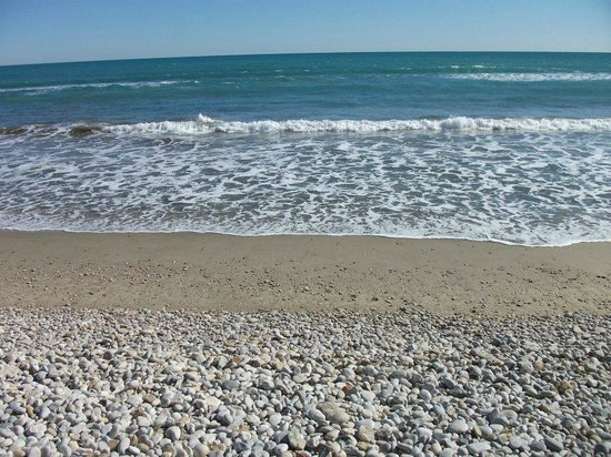 Seaside In Front Of The Campsite Picture Of Camping Didota Oropesa Del Mar Tripadvisor