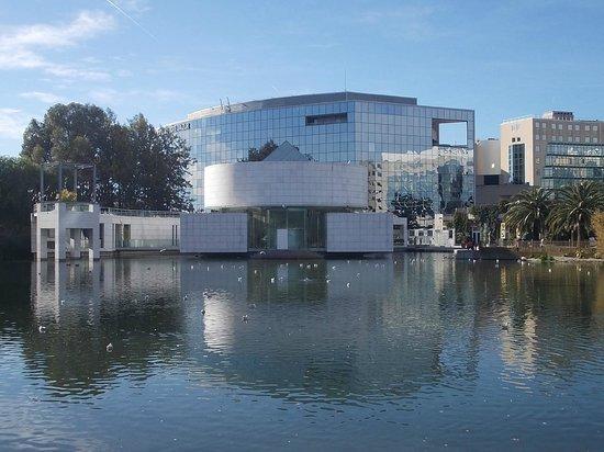 Musee des Arts Asiatiques de Nice