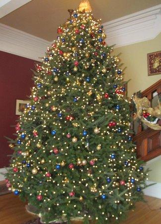 shadow lawn inn our 14 foot christmas tree that adorns the front hall at christmas - 14 Foot Christmas Tree