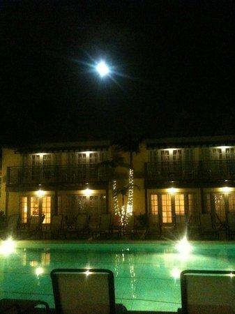 The Lafayette Hotel, Swim Club & Bungalows: Albarca tomada desde nuestra habitación.